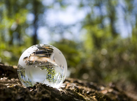 direito-ambiental-advocacia-aim-advogados